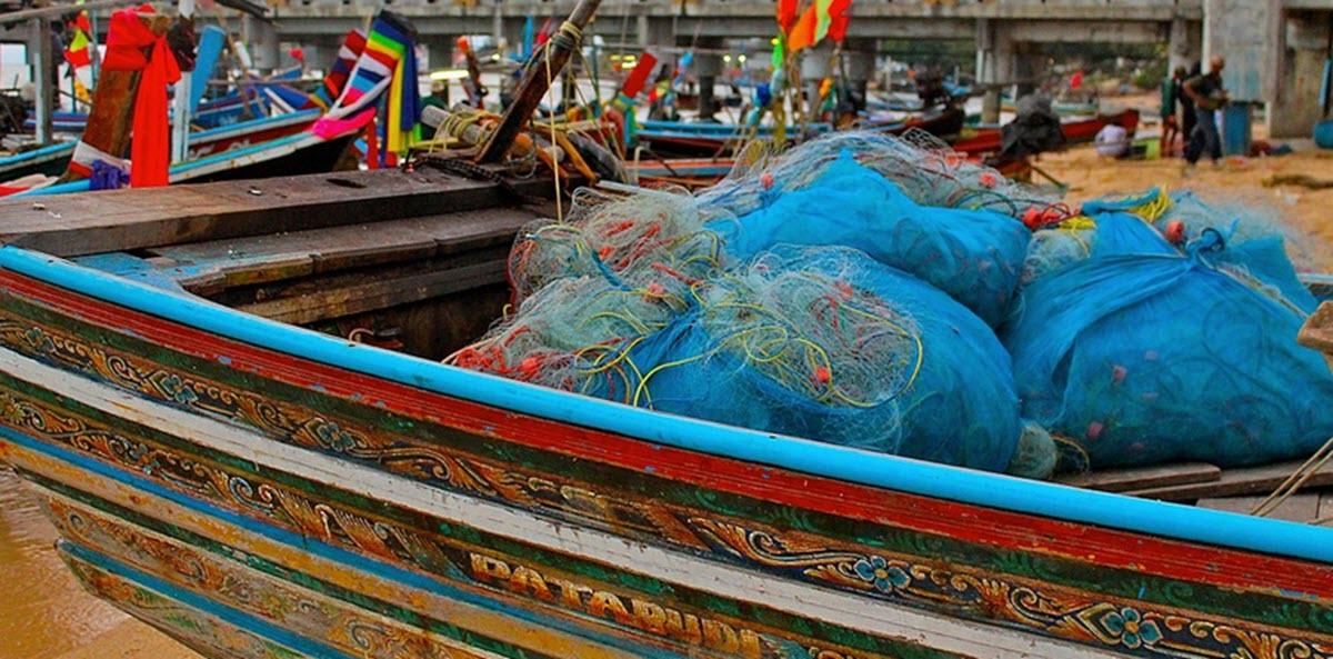 asia fishing